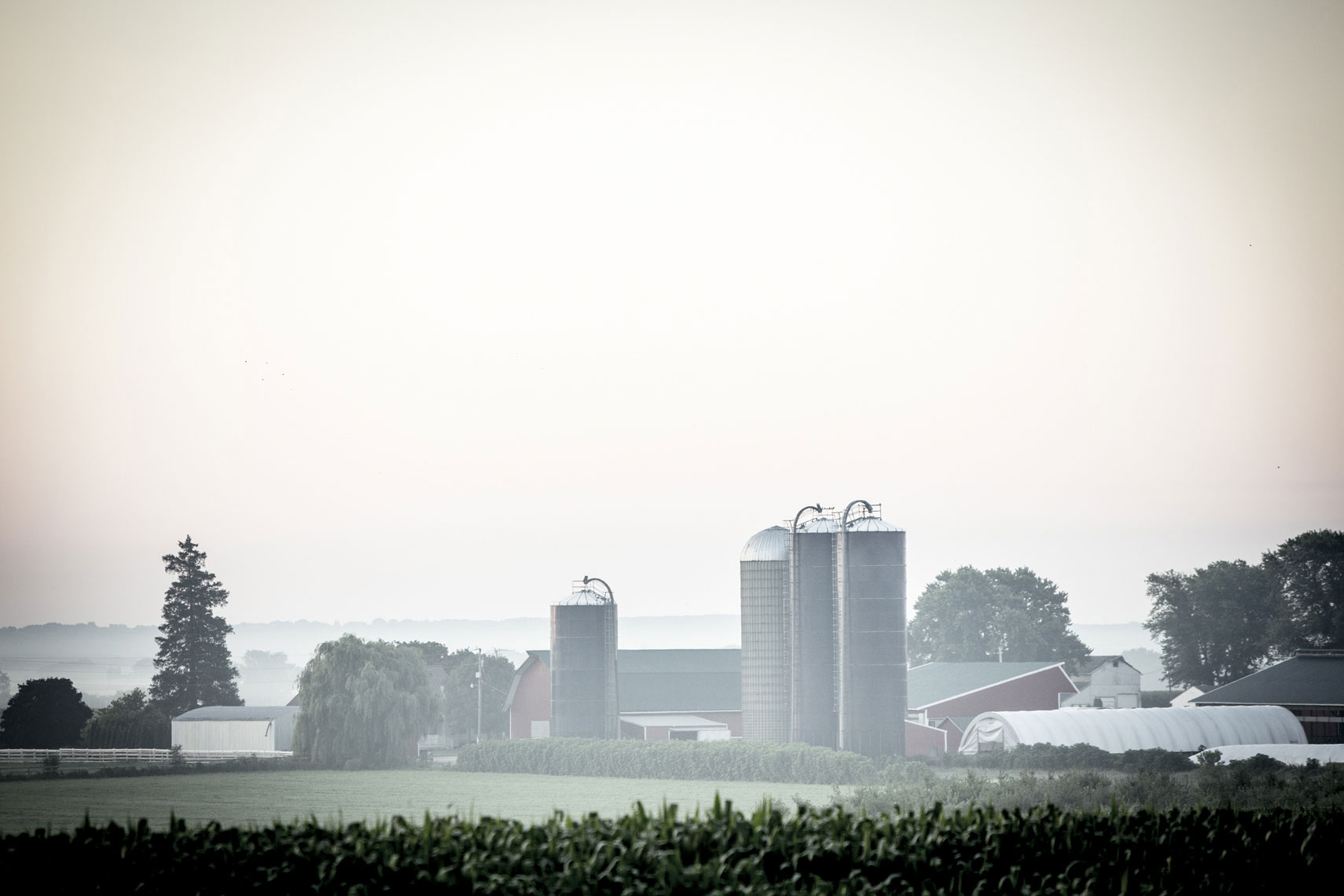 agriculture-farm-photography_32